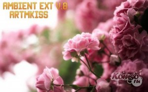 Ambient EXT v.8 (2014)