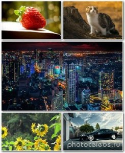 Best HD Wallpapers Pack №1182