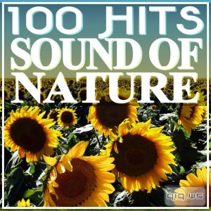 100 Hits Sound of Nature (2015)