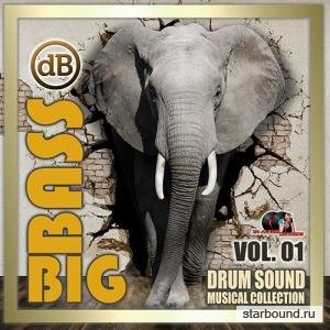 Big Bass: Drum Sound Musical Collection Vol.01 (2020)