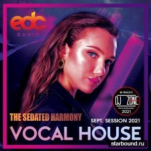 The Sedated Harmony (2021)